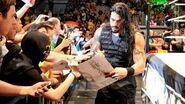 WWE WrestleMania Revenge Tour 2014 - Liège.18