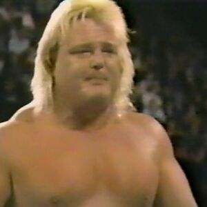 1.16.88 WWF Superstars.00006.jpg