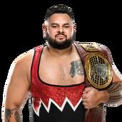Bronson Reed NXT NA Champ