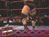 2001 WWF RAW Is War (Fleer) Lita (No.6)
