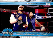 2019 WWE Road to WrestleMania Trading Cards (Topps) The Usos 70