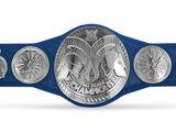 WWE SmackDown Tag Team Championship