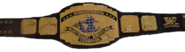 IntercontinentalTitle