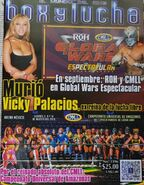 Box y Lucha 3396