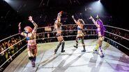 WWE World Tour 2017 - Mannheim 14