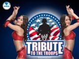 Tribute to the Troops 2013