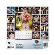 WWE 2016 Wall Calendar