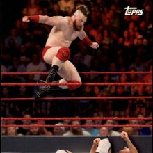 2018 WWE Road to WrestleMania Trading Cards (Topps) Cesaro & Sheamus 2.jpg