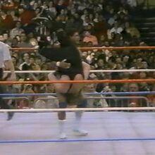 1.16.88 WWF Superstars.00019.jpg