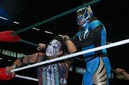 CMLL Domingos Arena Mexico 7-14-19 21