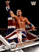 2017 WWE (Topps) Then, Now, Forever British Bulldog 184