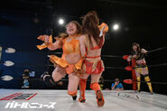 April 25, 2020 Ice Ribbon 9