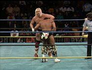 January 2, 1993 WCW Saturday Night 17