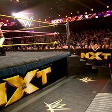 NXT 246 Photo 05.jpg