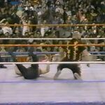 1.16.88 WWF Superstars.00008.jpg