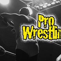 World Wrestling Entertainment programs