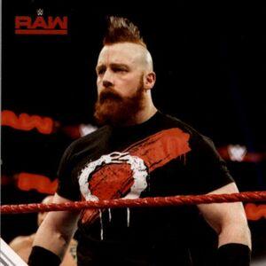 2017 WWE (Topps) Then, Now, Forever Sheamus 136.jpg