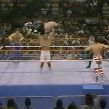 1.16.88 WWF Superstars.00015.jpg