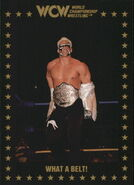 1991 WCW Collectible Trading Cards (Championship Marketing) What A Belt 54