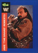 1991 WWF Classic Superstars Cards Jake Roberts 39