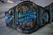 Impact World Tag Team Championship 2018.jpeg