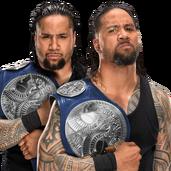 The Usos WWE Smackdown Tag Team Championship