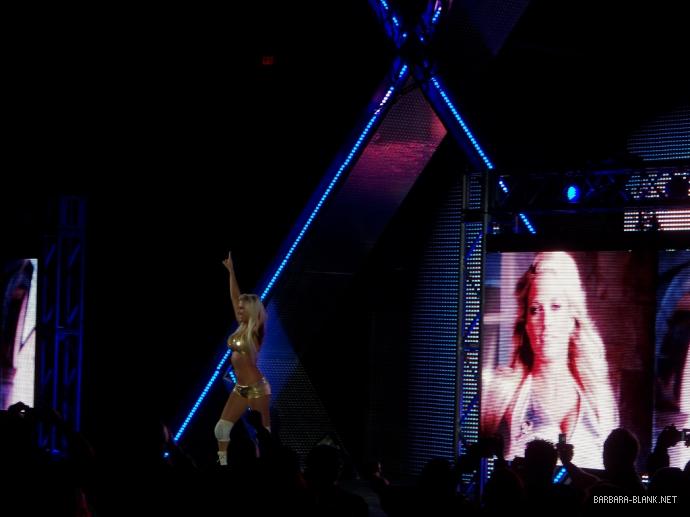 WWE House Show (Jan 20, 12')