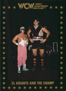 1991 WCW Collectible Trading Cards (Championship Marketing) El Gigante And The Champ 96