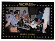 1991 WCW Collectible Trading Cards (Championship Marketing) Sting Is Injured 85