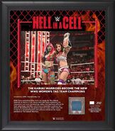 Kabuki Warriors Hell in a Cell 2019 15 x 17 Framed Plaque w Ring Canvas