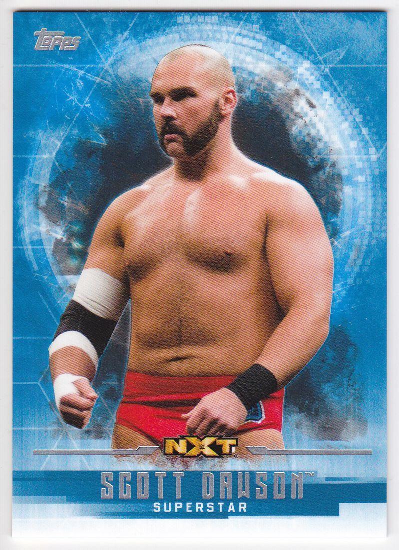2017 WWE Undisputed Wrestling Cards (Topps) Scott Dawson (No.55)