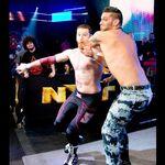 NXT 213 Photo 03.jpg