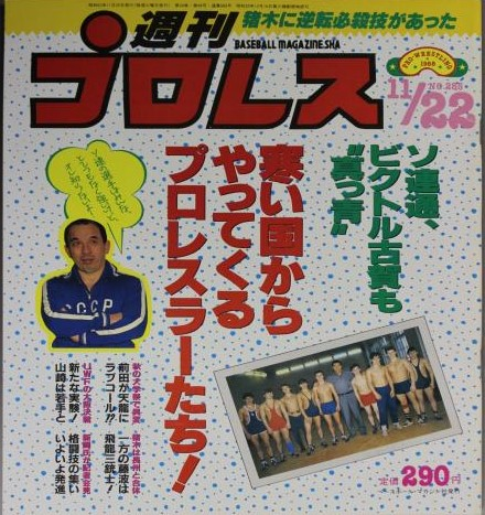 Weekly Pro Wrestling No. 285