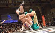 DDT Judgement 2015 19