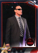 2013 TNA Impact Glory Wrestling Cards (Tristar) Sting 106