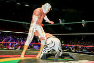 CMLL Domingos Arena Mexico (August 4, 2019) 20