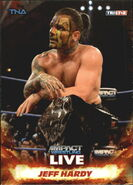 2013 TNA Impact Wrestling Live Trading Cards (Tristar) Jeff Hardy 5