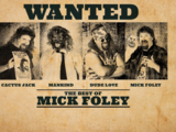The Best of WWE: The Best of Mick Foley