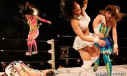 December 27, 2014 Ice Ribbon 5