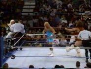 January 2, 1993 WWF Superstars of Wrestling.00007