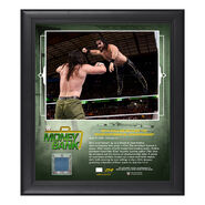 Seth Rollins Money in The Bank 2018 15 x 17 Framed Plaque w Ring Canvas