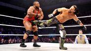 WWE WrestleMania Revenge Tour 2014 - Liège.3