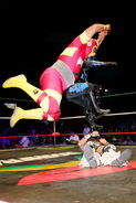 CMLL Martes Arena Mexico (March 19, 2019) 14