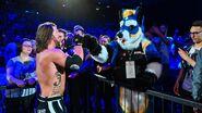 WWE Live Tour 2019 - Berlin 8