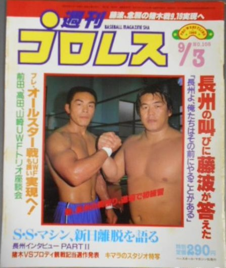 Weekly Pro Wrestling No. 108