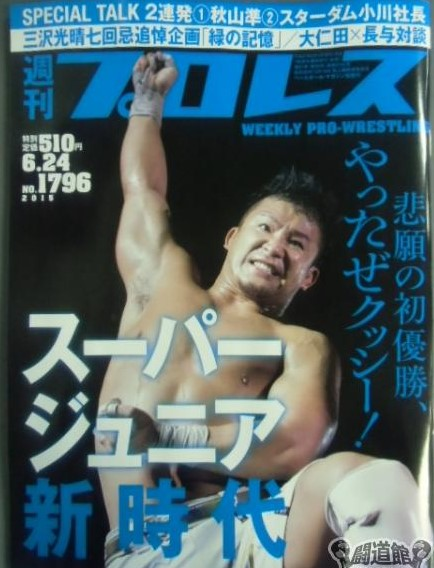 Weekly Pro Wrestling No. 1796