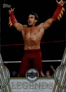 2018 Legends of WWE (Topps) Ricky Steamboat 42