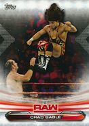 2019 WWE Raw Wrestling Cards (Topps) Chad Gable 16