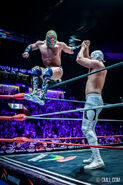 CMLL Domingos Arena Mexico (January 26, 2020) 17