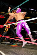 CMLL Martes Arena Mexico (January 22, 2019) 8